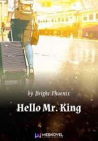 hello-mr-king-novel-m212x283
